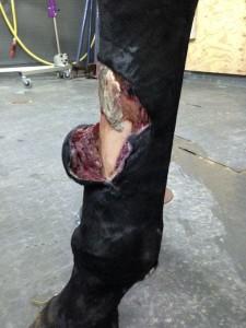 retrait-premiere-bandage2